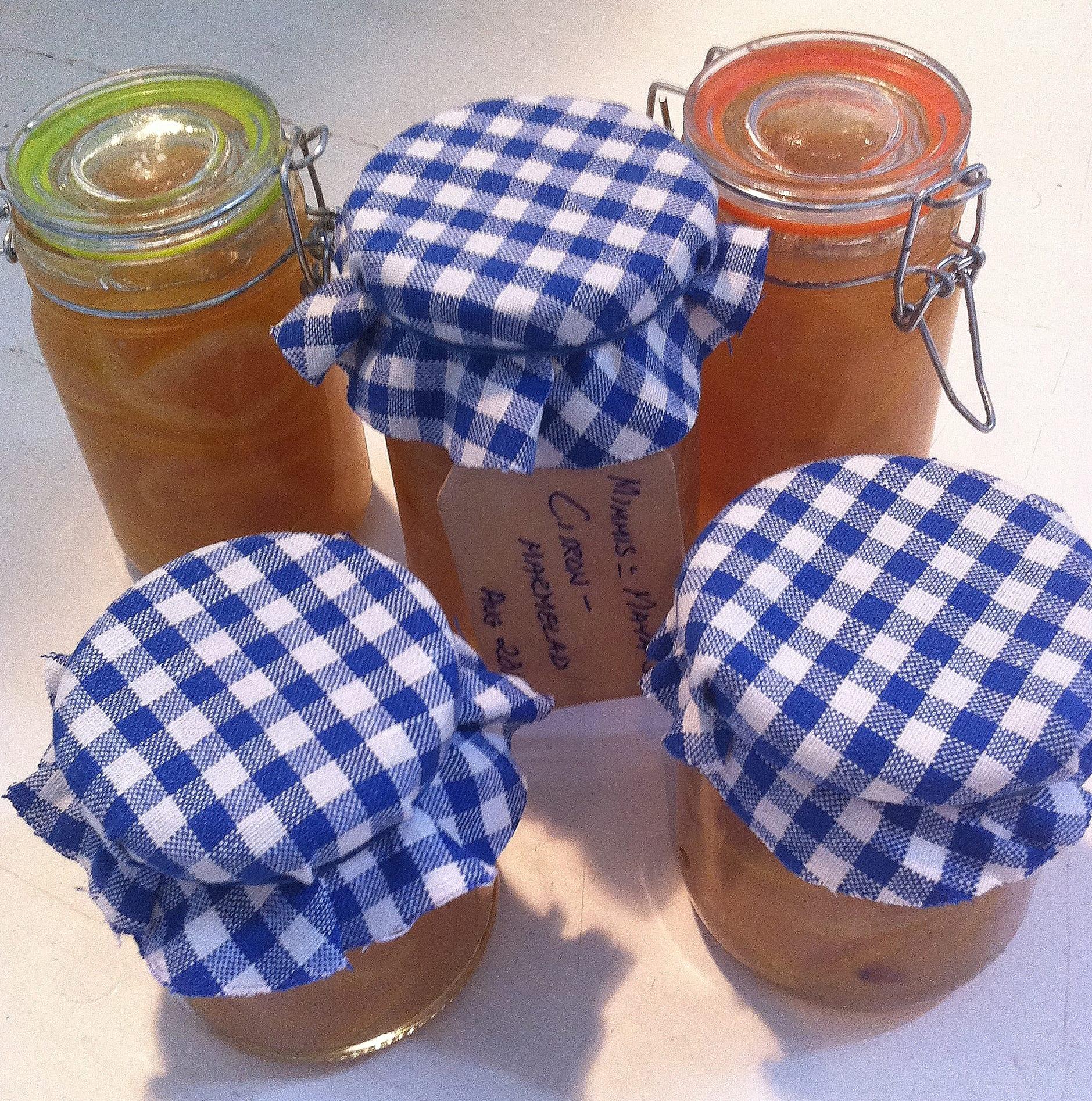 Hemlagad-citronmarmelad-till-frukost-på-Äventyrens-Ö
